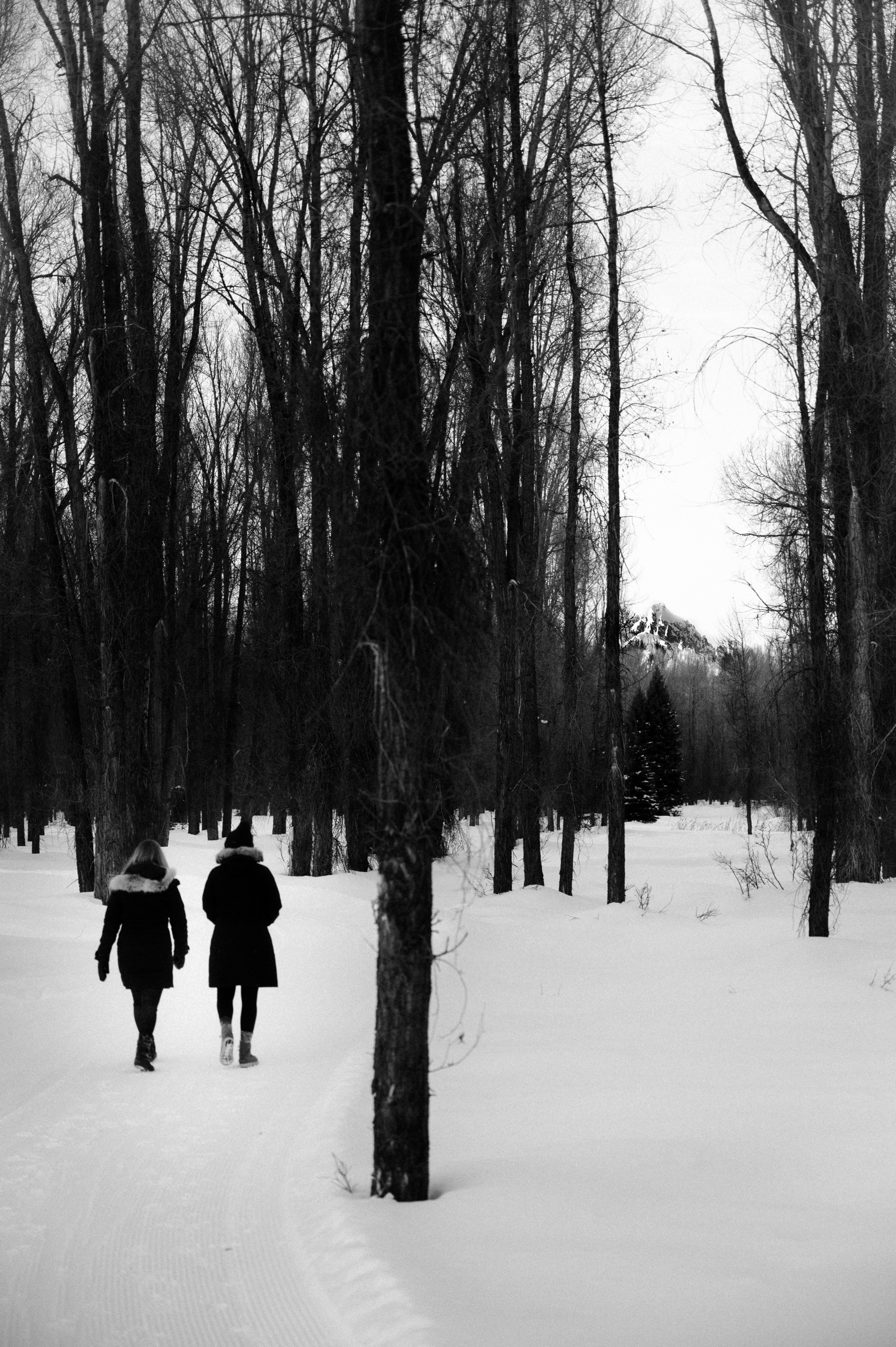 Elise and Mckaye walking in the snow